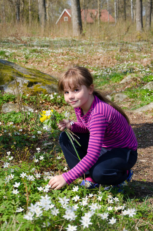 Download Girl picking flowers stock image. Image of flower, house - 27832939