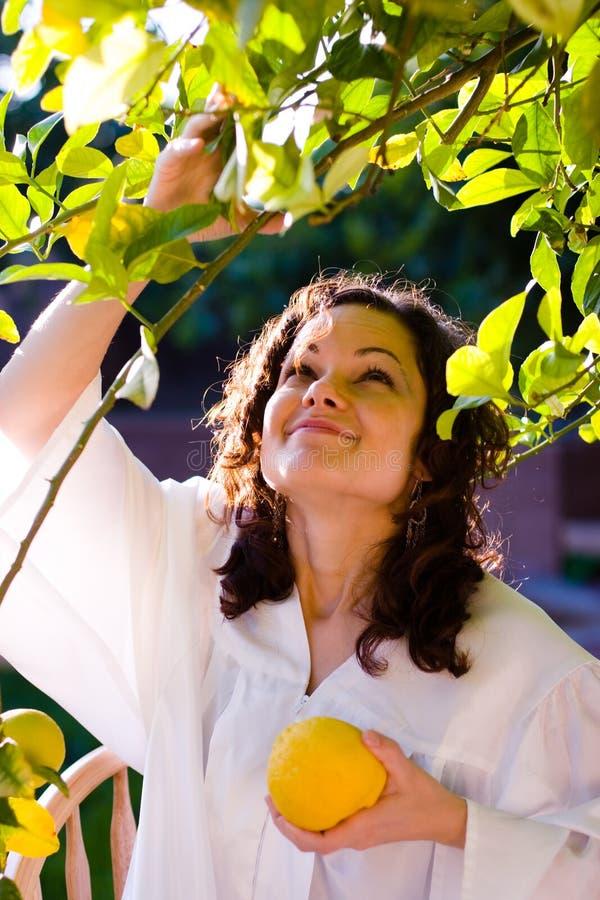 Free Girl Picking Up Fresh Fruit Royalty Free Stock Photography - 2370827