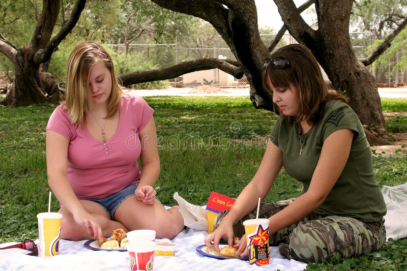 Download Girl Picnic stock photo. Image of laughing, park, chicken - 1253326