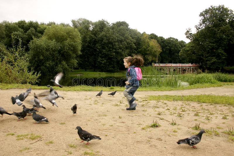 Girl and pigeons stock photography