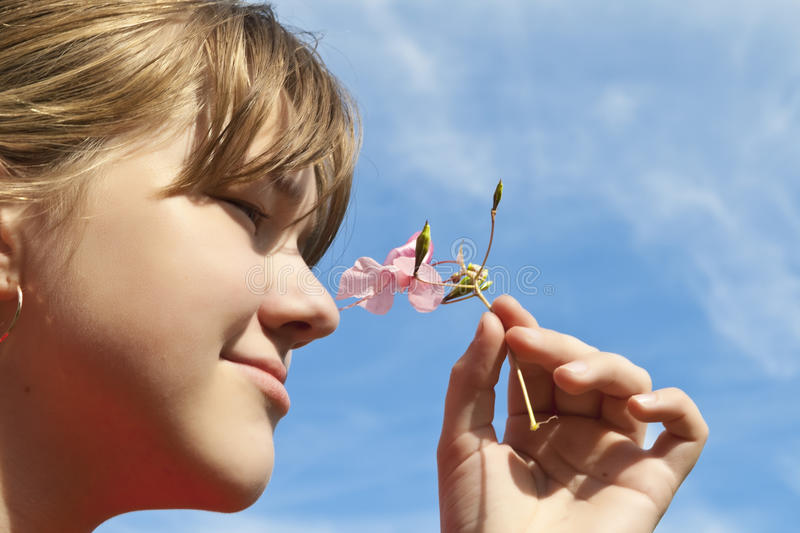 Girl and pink flower stock images
