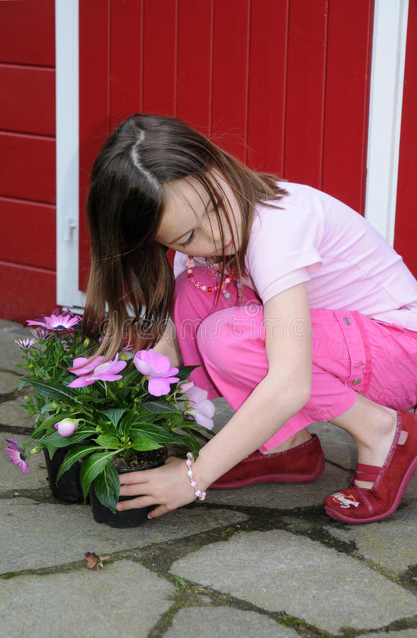 Download Girl with pink flowers stock image. Image of hold, flowers - 24574887