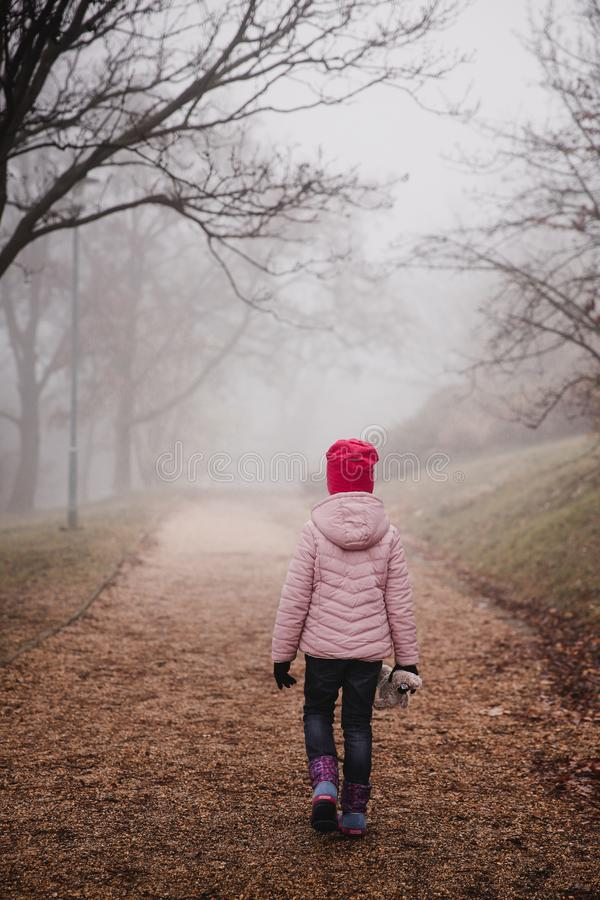 Girl in a pink jacket walking in an autumn misty forest in park stock photo