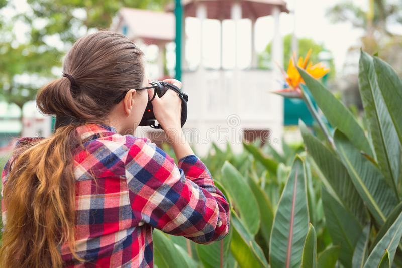 Girl in plaid shirt takes picture of flower in park, rear view, selective focus. Photograph, naturalist, study of nature theme stock photography