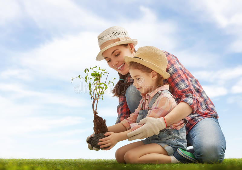 Girl plant sapling tree. Mom and her child girl plant sapling tree. Spring concept, nature and care stock image