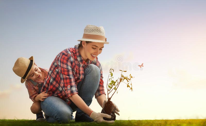 Girl plant sapling tree. Mom and her child girl plant sapling tree. Spring concept, nature and care stock photo