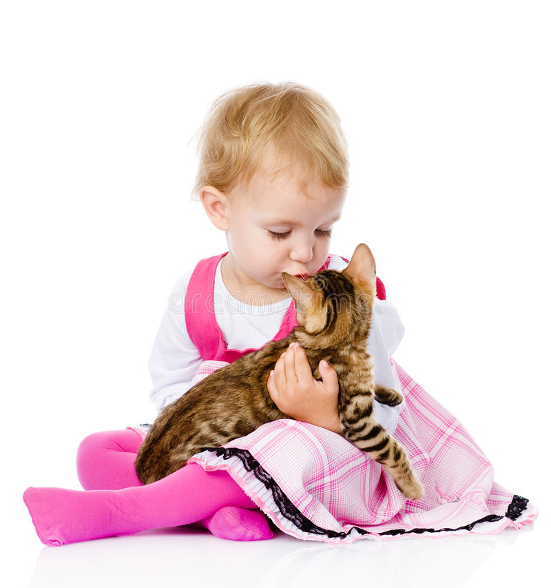 Girl playing with cat. isolated on white background royalty free stock photos