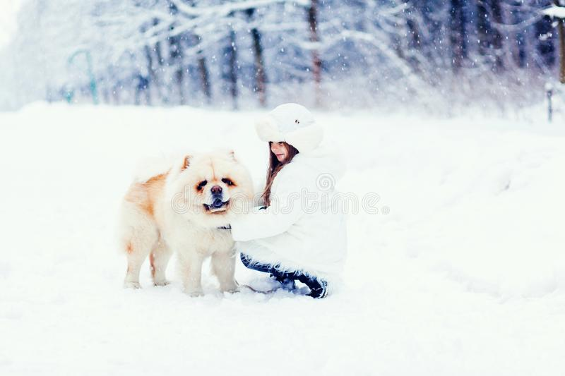 Girl playing with chow chow dog stock photos