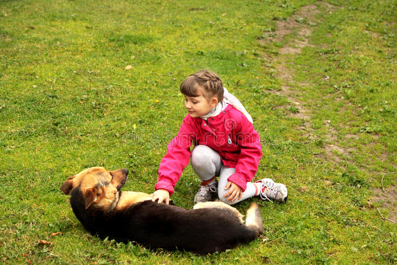 Girl playing with dog royalty free stock images