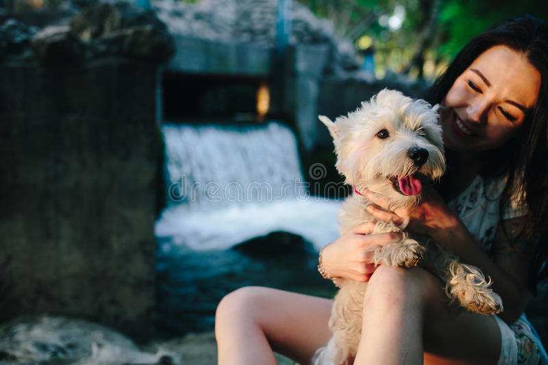 Girl playing with a dog stock photo