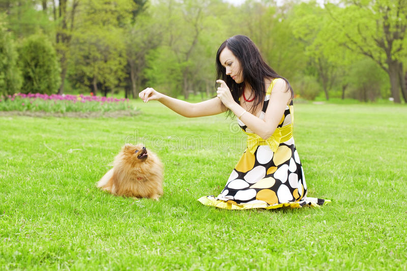 Girl playing with a dog in the park royalty free stock images