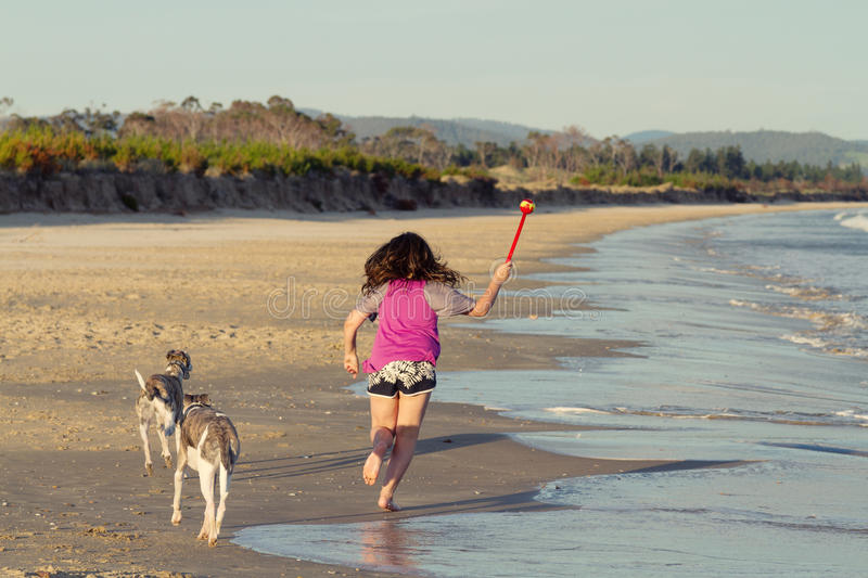 Girl playing with dogs stock image