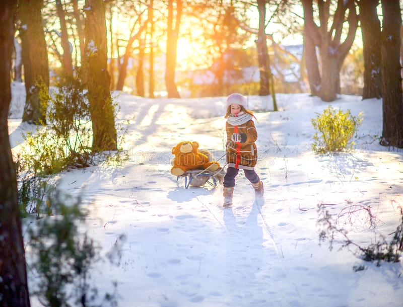 Girl playing and having fun in the winter forest at sunset. Sledding a teddy bear. Children sledding in a snowy park. Winter holiday stock photos