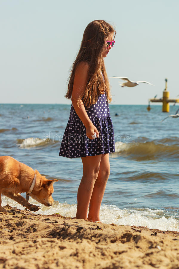 Girl playing with her dog. Connection between animals and kids concept. Sportive mixed race dog and girl kid playing together. Active child with puppy having stock photos