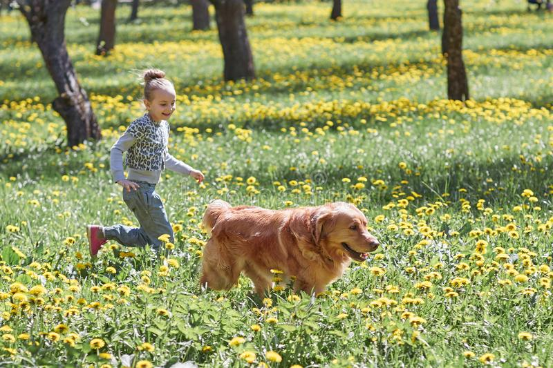 Girl playing with her dog in the spring Sunny Park. Photo with copy space stock photo