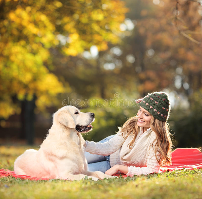 Girl playing with her labrador retriever dog. In the park stock photo