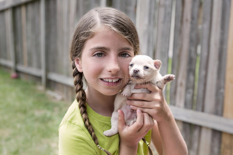 Girl playing with puppy chihuahua pet dog. At the backyard royalty free stock photo