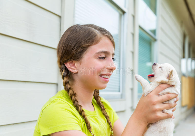 Girl playing with puppy chihuahua pet dog. Outdoor royalty free stock photos