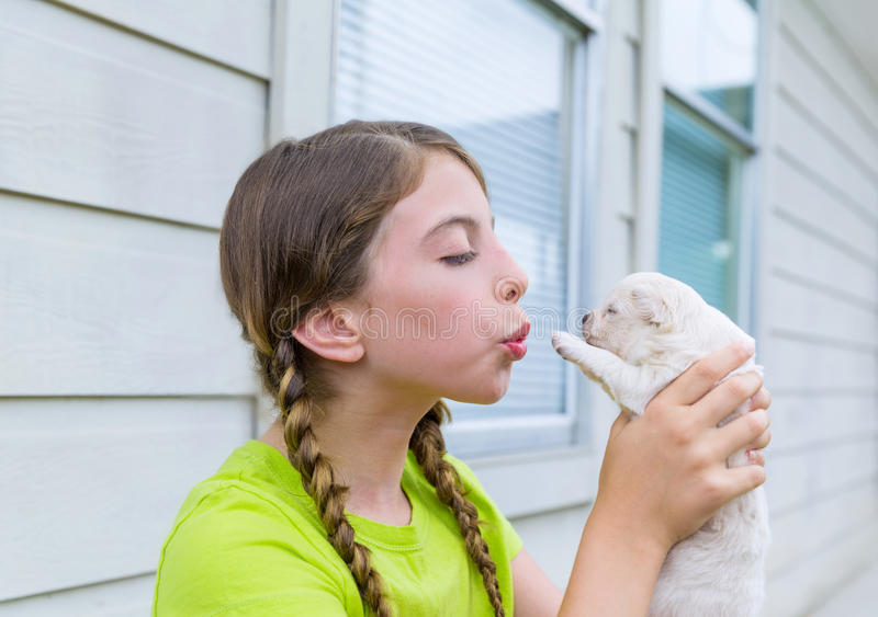 Girl playing with puppy chihuahua pet dog. Outdoor royalty free stock images
