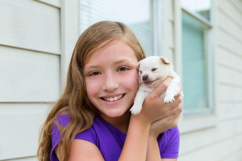 Girl playing with puppy chihuahua pet dog. Outdoor royalty free stock image