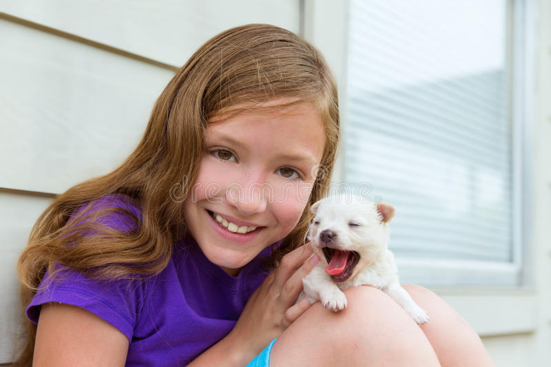Girl playing with puppy chihuahua pet dog. Outdoor royalty free stock photo