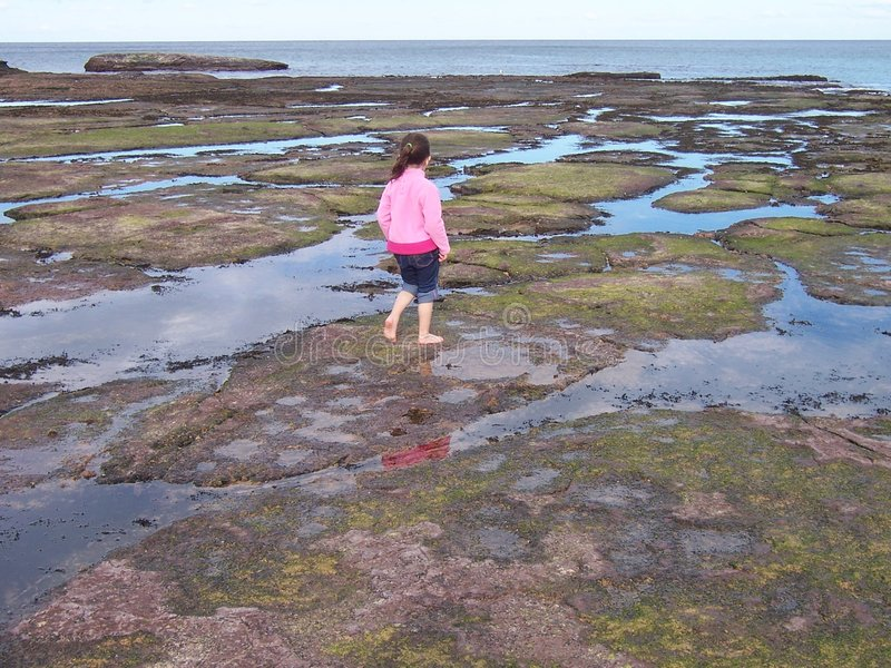 Download Girl playing in rock pools stock photo. Image of pools - 452224