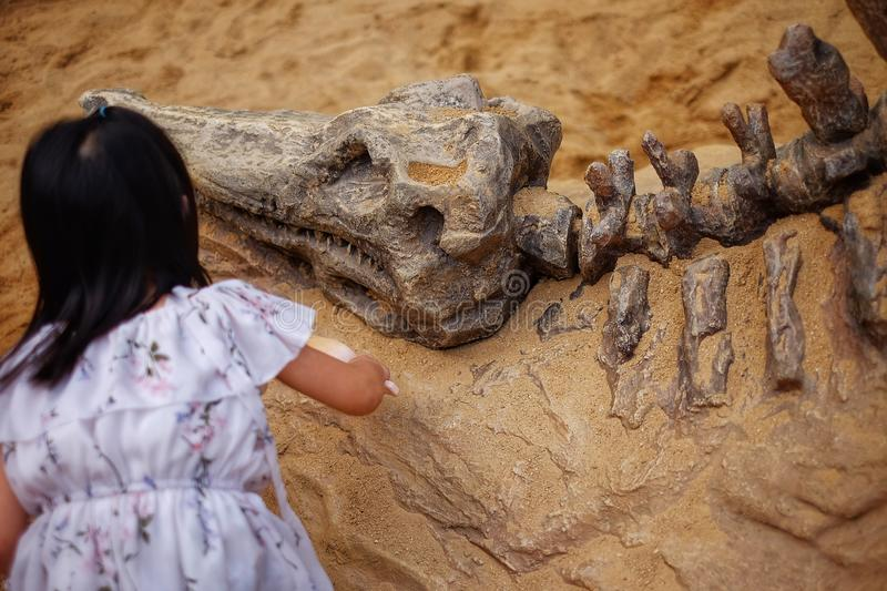 A girl playing in a sandbox with a modeled dinosaur fossil, digging sand off the fossil royalty free stock image