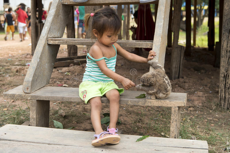 Girl playing with sloth stock images