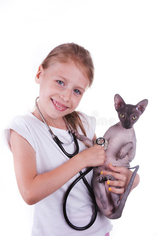 Girl playing a veterinarian with cat shpinx obraz stock