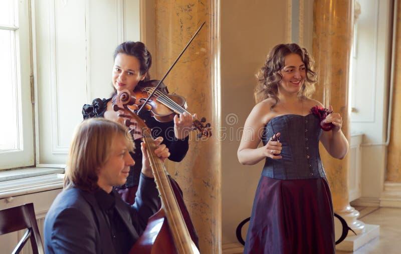 Girl playing violin, string ensemble rehearsal - - viola da gamba, castanets, baroque viola. Beautiful young happy woman play violin music instrument royalty free stock photography