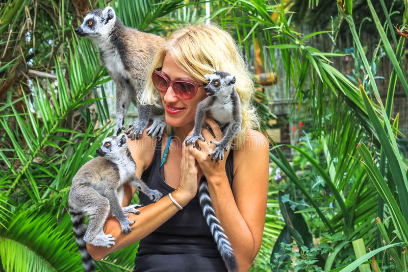 Download Woman plays with lemurs stock photo. Image of enjoy, play - 41961488