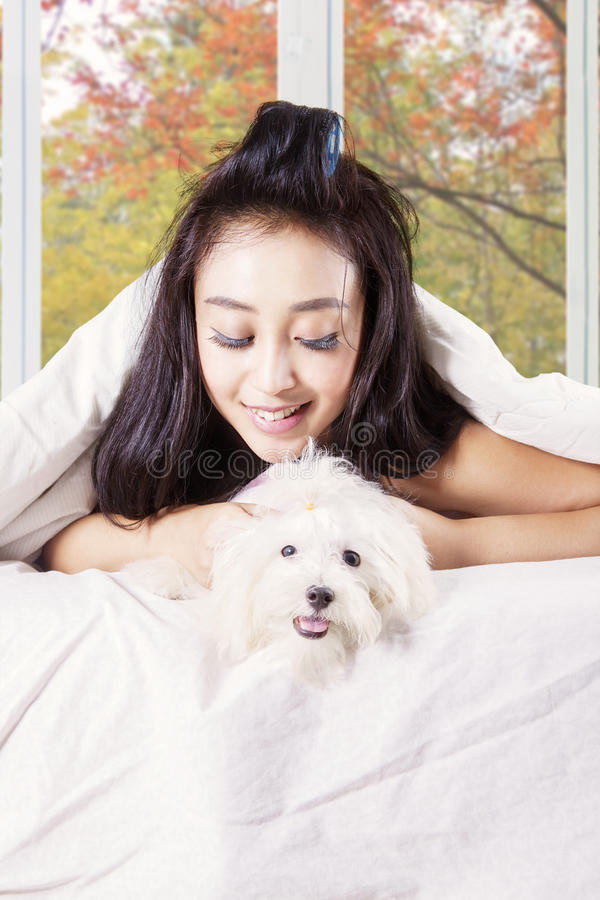 Girl plays with a puppy under blanket stock photography