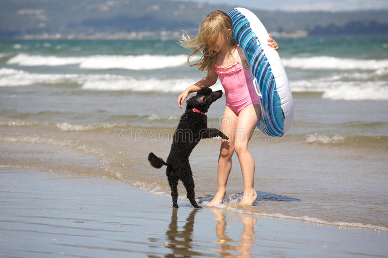 Girl and poodle at beach royalty free stock photography