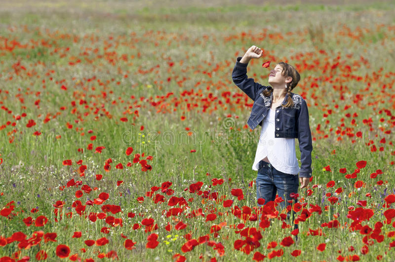 Download Girl with poppies smelling stock image. Image of child - 31243813