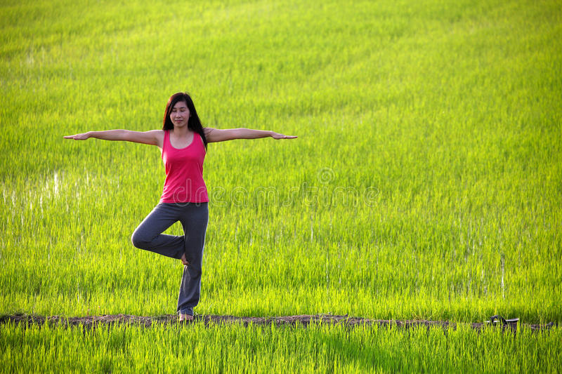 Girl practicing yoga,standing in paddy field. Girl practicing yoga in paddy field royalty free stock image