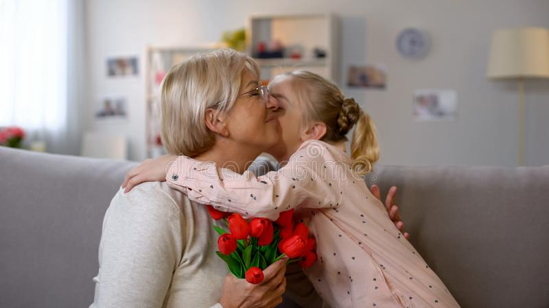 Girl presenting red tulips to grandma, women day celebration, family love royalty free stock photos