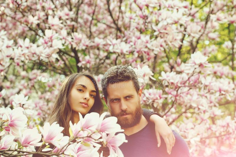Girl hugging bearded man at magnolia trees stock images