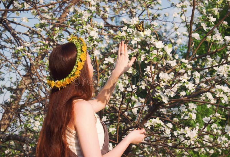 The girl pulls a hand to yellow butterfly in apple flowers royalty free stock photography