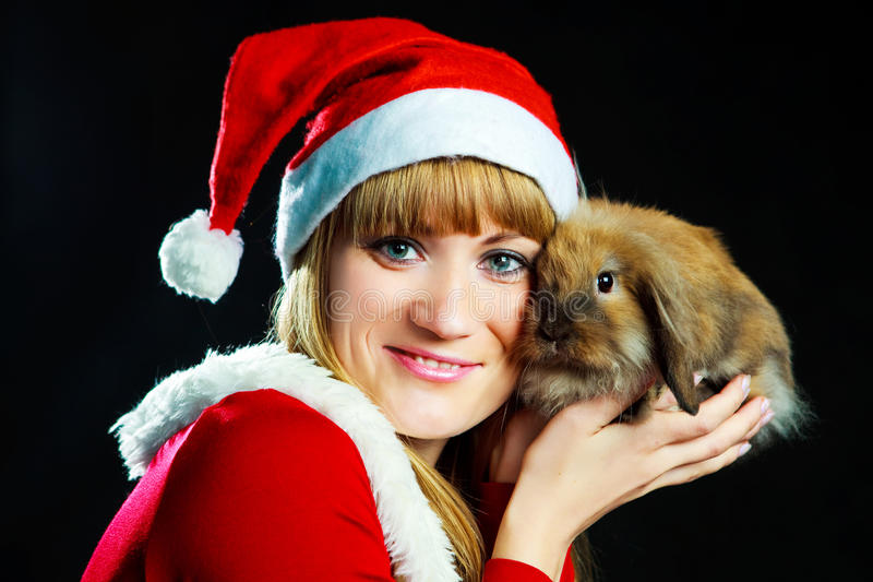Download Girl with a rabbit stock photo. Image of black, hold - 11560478