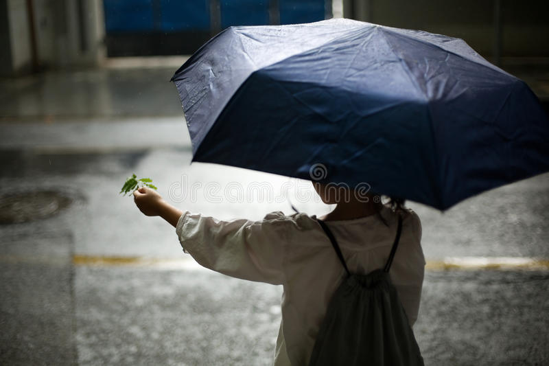 Girl in the rain. A girl standing in the rain with an umbrella royalty free stock photos