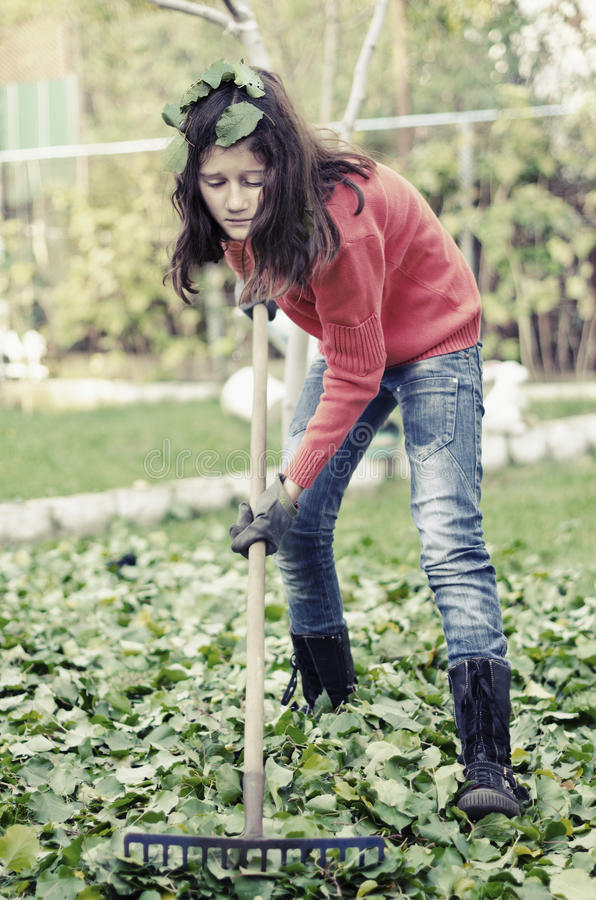 Girl with a rake tool cleaning garden green leafs royalty free stock photography