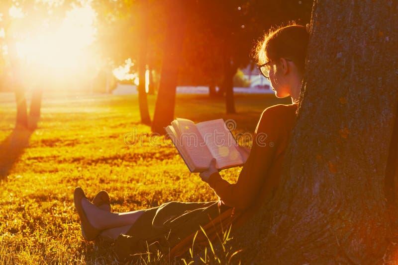 Girl reading book at park. In summer sunset light stock photo
