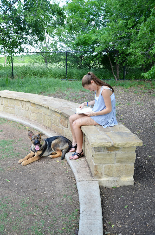 Girl Reading in Park with Dog. Resting German Shepherd laying on the ground while he's owner reads a book on a park ledge stock image