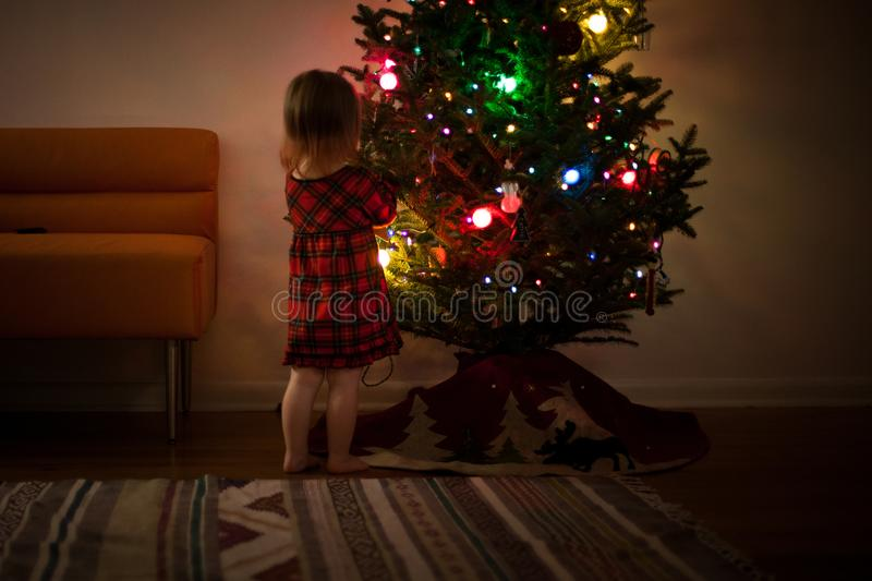Girl in Red and Black Dress Standing in Front of Christmas Tree Inside Room stock images