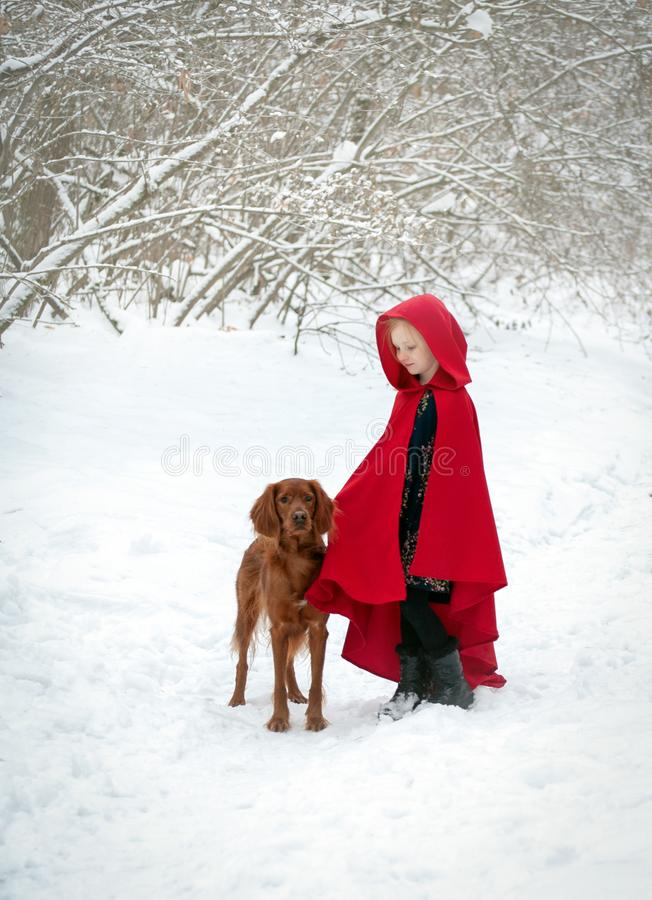 Girl in a red coat with a dog stock photography