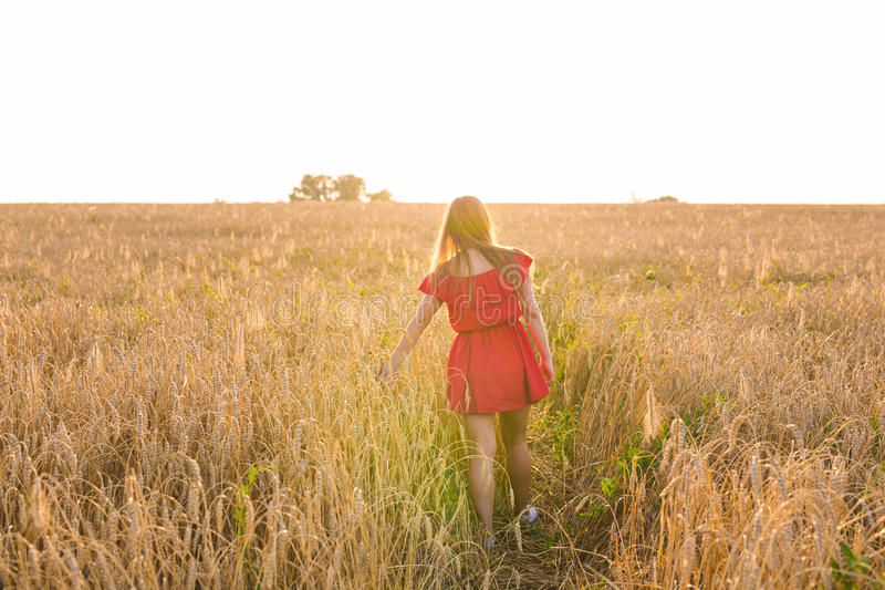 Girl in red dress on the field. Rear view.  stock photos