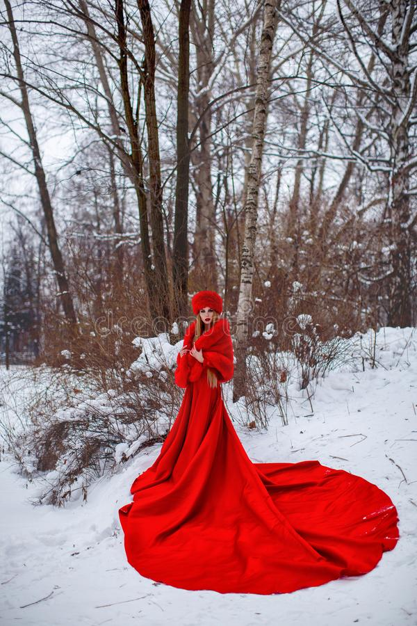 Girl in red dress in winter forest. Girl in a red coat and hat in the winter forest. A young girl with long hair and red flowers in her hair stock images