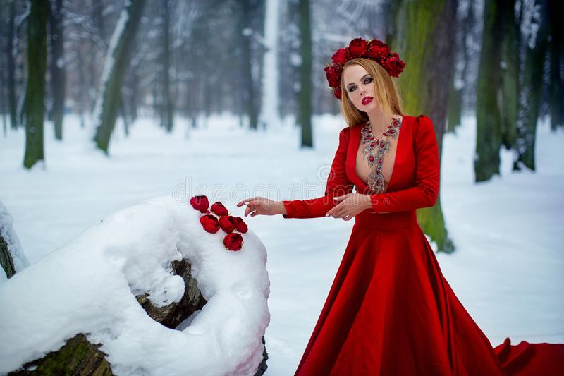 Girl in red dress in winter forest. A young girl with long hair and red flowers in her hair royalty free stock photos