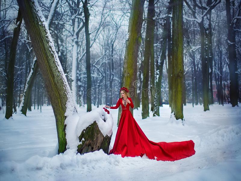 Girl in red dress in winter forest. A young girl with long hair and red flowers in her hair royalty free stock image