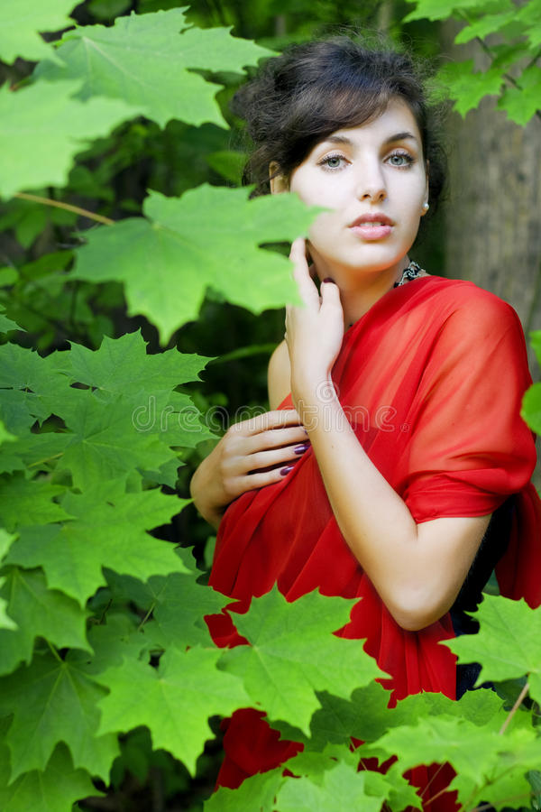 Girl in the red in the green leaves. The image of the girl in the red in the green leaves stock images